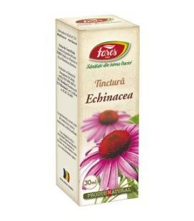 Tinctura echinacea x 30ml