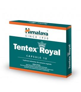 Tentex Royal x 10 cps   PRISUM