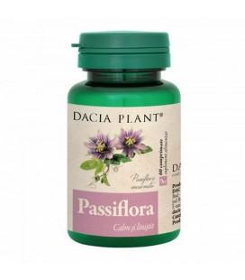 Passiflora x 60cp Cutie  DACIA PLANT
