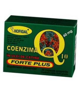 Coenzima Q10 Forte+ulei catina x 40cps.moi