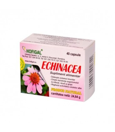 Echinacea 500mg x 40cps