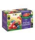 Ceai Aromfruct fructele Carpatilor x 20dz