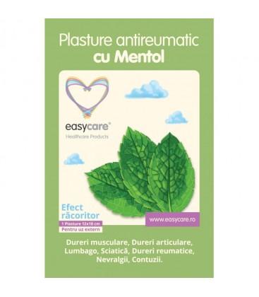 EASYCARE Plasture antireumatic cu mentol x 1buc cutie  DASCO
