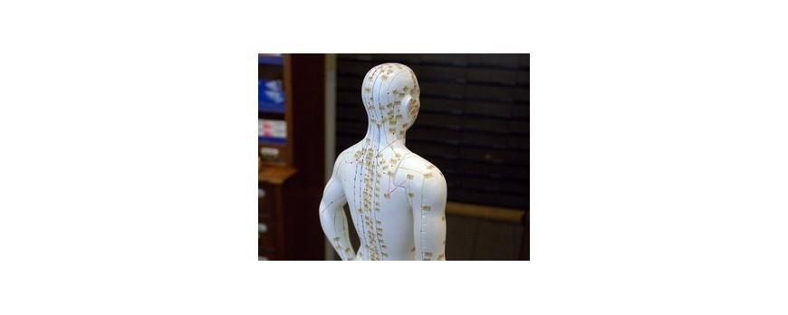 Acupunctura favorizeaza pierderea in greutate
